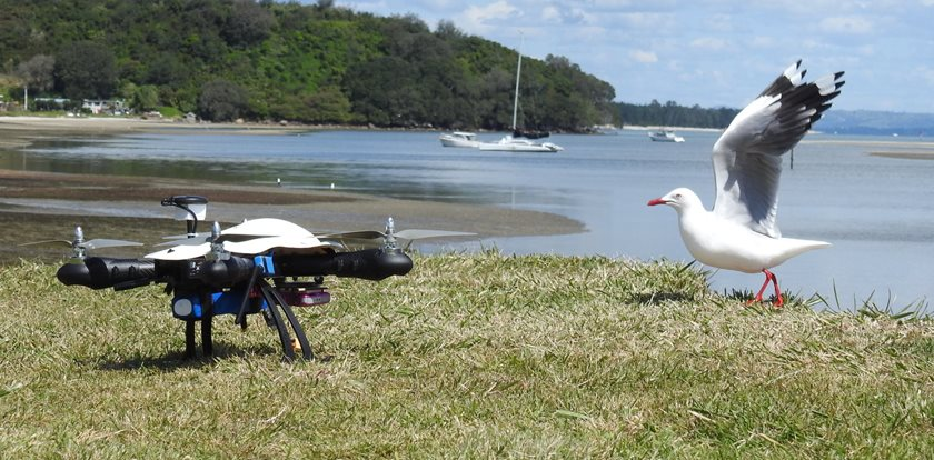 National Parks Australia uses drones to remotely find and track elusive wildlife